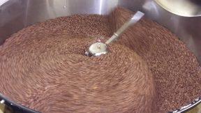 Coffee Roasting Norfolk