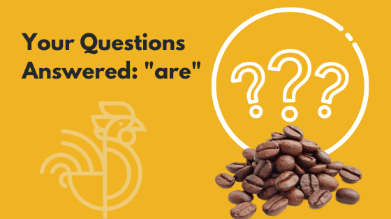 "Your Questions Answered: ""are"""
